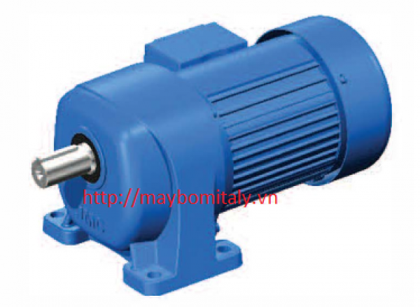 Motor giảm tốc hiệu TRANSMAX Model: G3LM