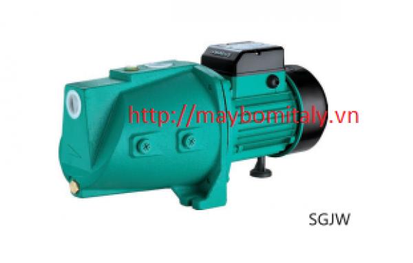 Máy bơm Con Lợn Model: SGJW